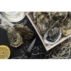Oysters Fines de Claires Label Rouge Marennes Oléron N°3
