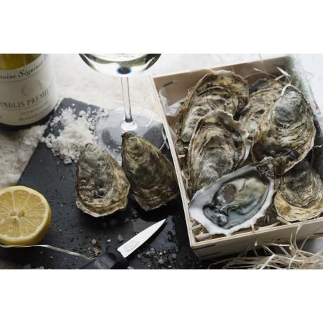 Oysters Fines de Claires Label Rouge Marennes Oléron N°2